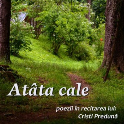 Cristinel Preduna - Atata Cale Poezii