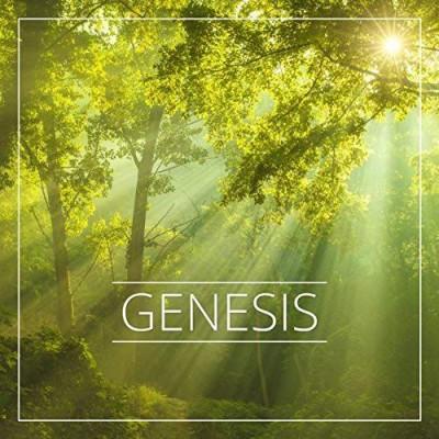 Robert Verdes si Sergiu Verdes - Genesis (2016)