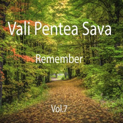 Vali Pentea Sava - Remember (Vol.7)