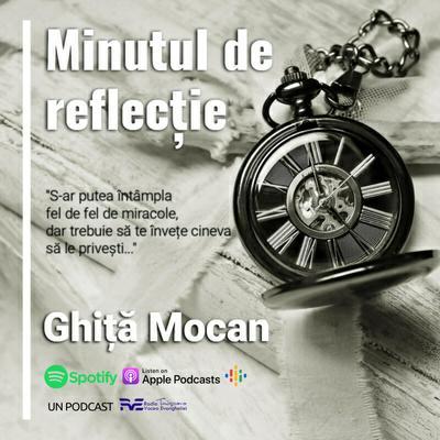 RVE Timisoara - Minutul de Reflecție (2020)