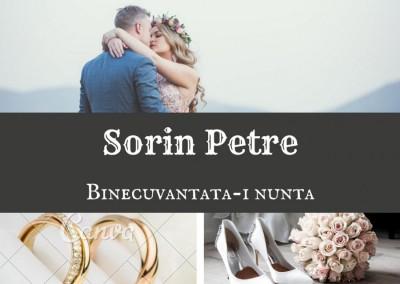Sorin Petre - Binecuvantata-i Nunta
