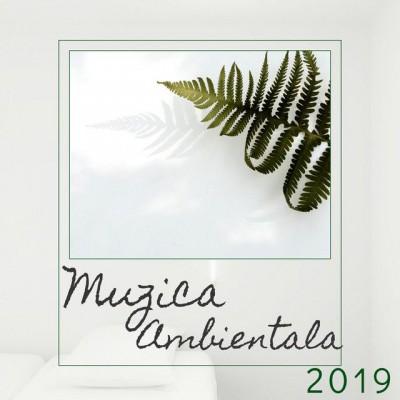 Alina Minouge - Muzica Ambientala Muzică Instrumentală Muzică de Relaxare (2019)