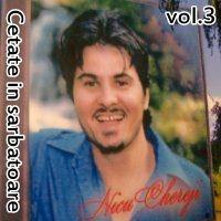 Nicu Chereji - Cetate in sarbatoare Vol.3 (2009)