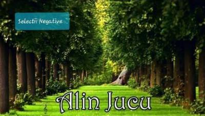 Alin Jucu - Selectii Negative