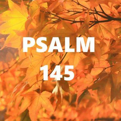 Adrian Cost - Psalm 145 (2020)