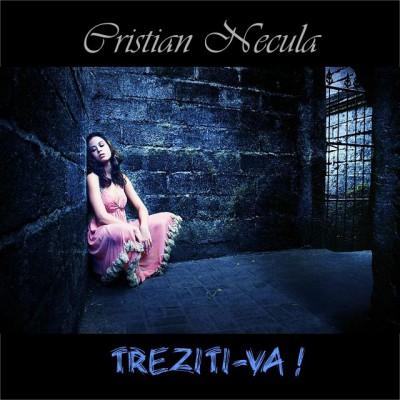 Cristian Necula - Treziti-va