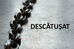 Descatusat - CD 01