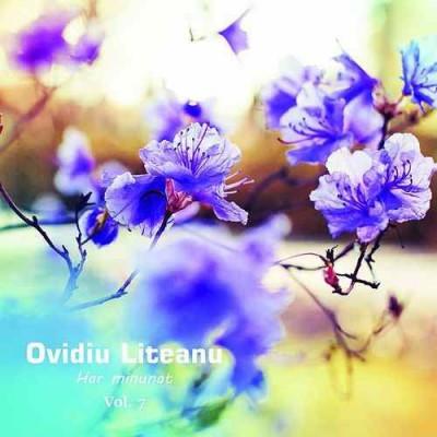 Ovidiu Liteanu - Har minunat Negative Vol.7