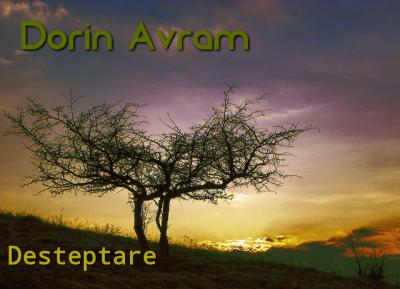 Dorin Avram - Desteptare