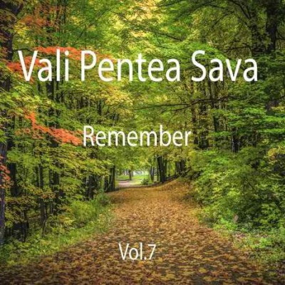 Vali Pentea Sava - Remember Vol.7 (2017)